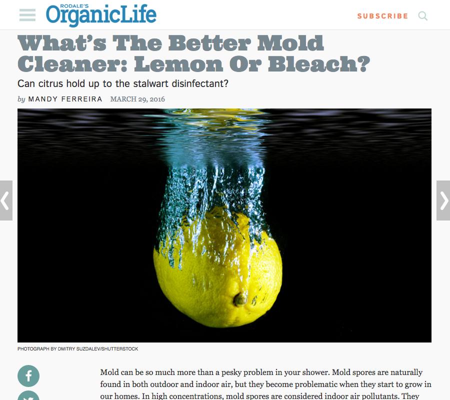 What's the better mold cleaner: Lemon or Bleach?