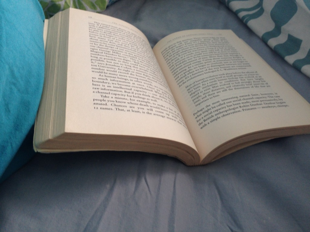 reading in bed, treading lightly