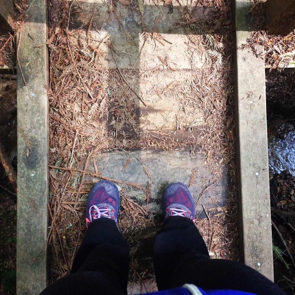 Hiking in Butano State Park, Butano Creek Crossing Nike Terra Kiger
